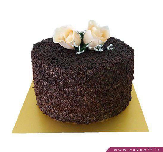 کیک شکلاتی بی بی
