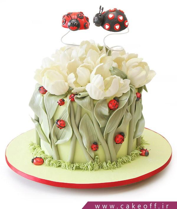کیک کفشدوزکی