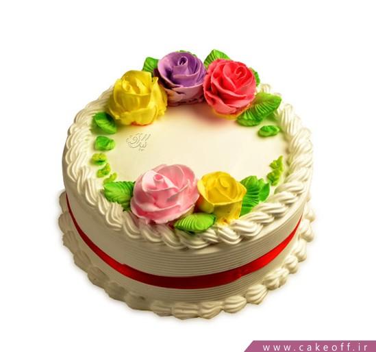 انواع مدل کیک تولد دخترانه - کیک تولد دخترانه گلنوش | کیک آف