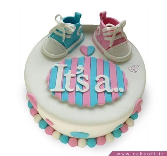 کیک تعیین جنسیت نوزاد هادی هدی