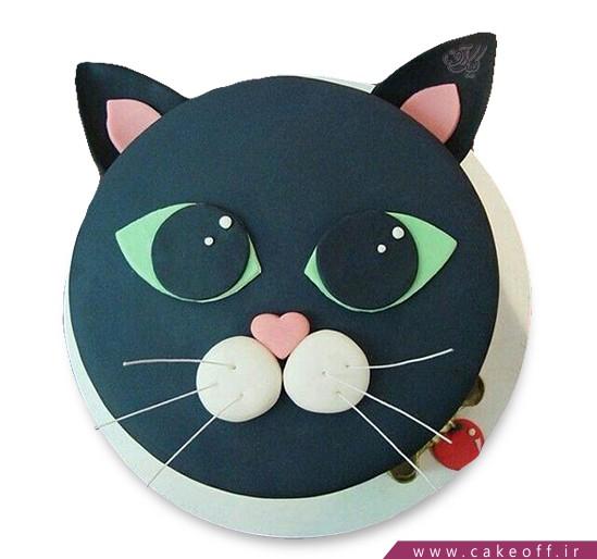 کیک فوندانتی گربه ملوس