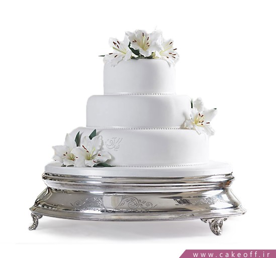 کیک سپینود