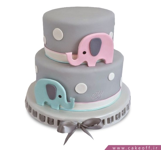 کیک تعیین جنسیت نوزاد ویچ وان