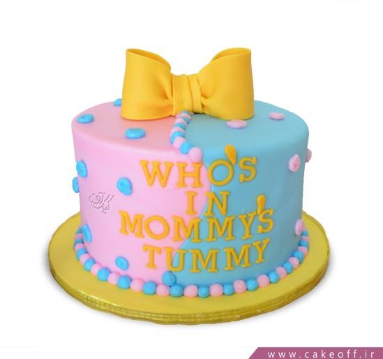 کیک تعیین جنسیت نوزاد دنیای مامان