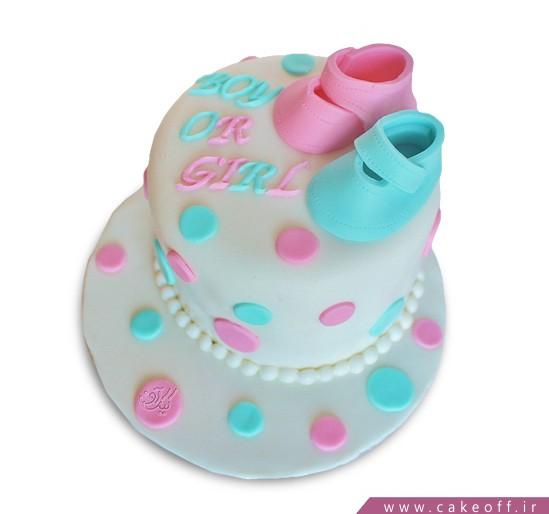 کیک تعیین جنسیت نوزاد دارا سارا