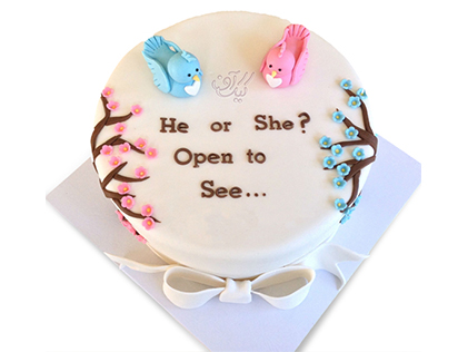 کیک تعیین جنسیت نوزاد مونا و نیما | کیک آف