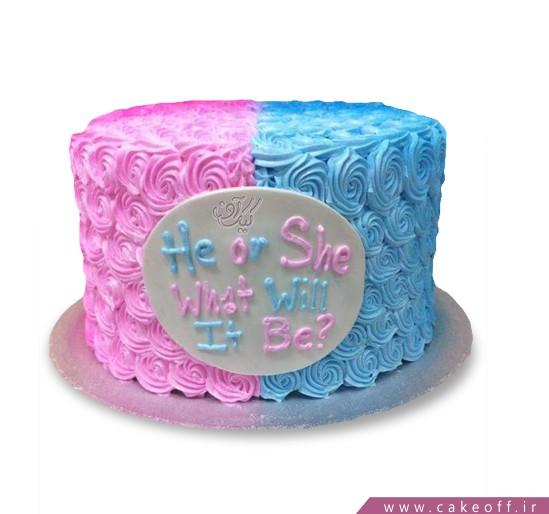 کیک تعیین جنسیت کاوک و چکاوک
