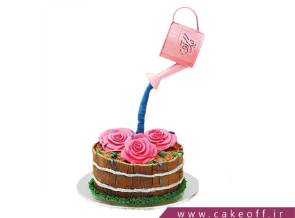 کیک خاص - کیک آبپاشی به گل ها | کیک آف