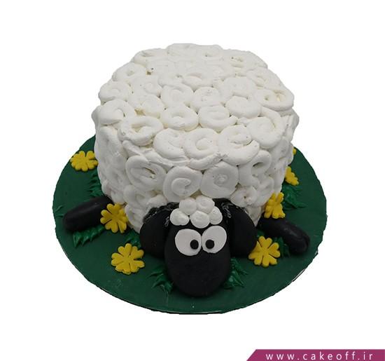 کیک بره ناقلا 10