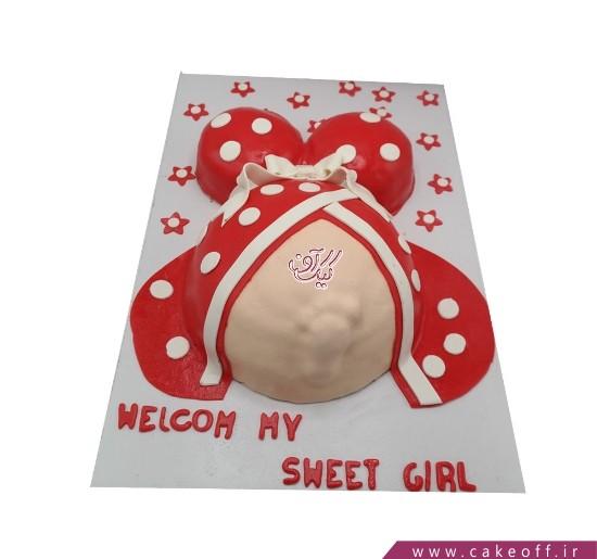 کیک بارداری به این دنیا خوش آمدی