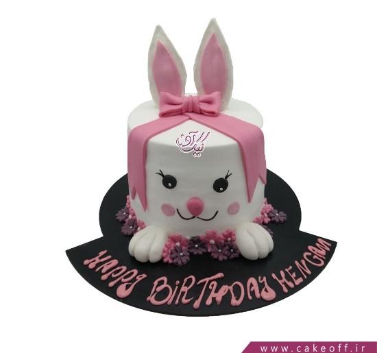 کیک تولد حیوانات - کیک خرگوش ۴ | کیک آف