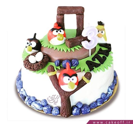 کیک انگری بردز 25