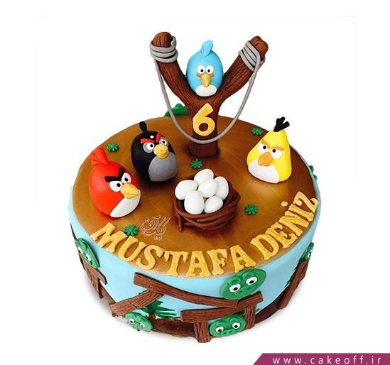 کیک انگری بردز 21