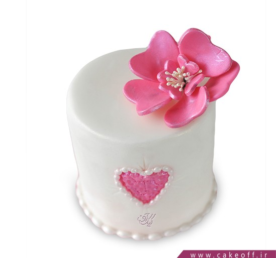 کیک گل - کیک آمستردام   کیک آف