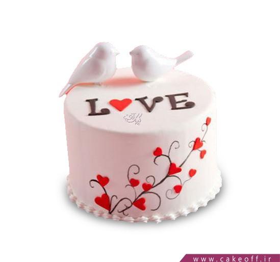 کیک ویژه ولنتاین - کیک دو کبوتر | کیک آف