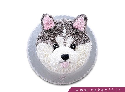 کیک تولد حیوانات - کیک گرگی خشمگین | کیک آف