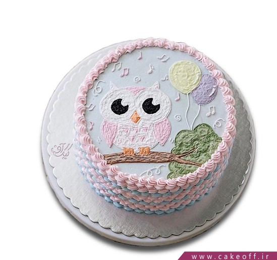 کیک های تولد - کیک تولد بچه - کیک جغد روی نت | کیک آف