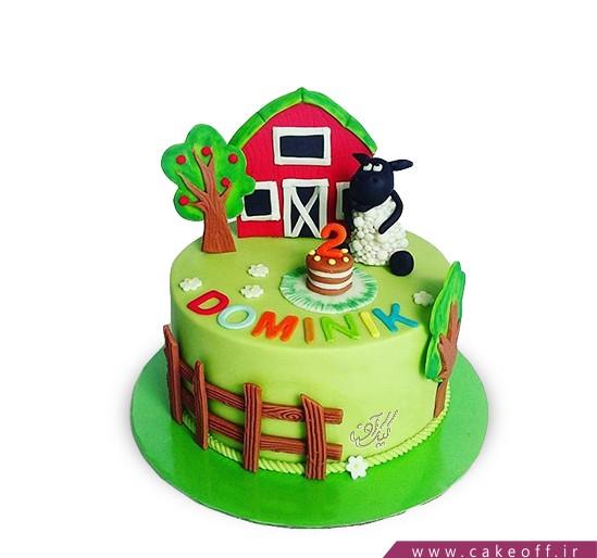 کیک بره ناقلا 11