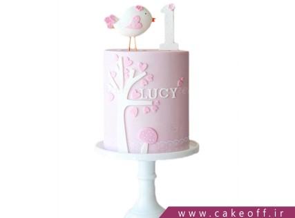 انواع کیک تولد - کیک دخترانه گنجشک لب بوم | کیک آف