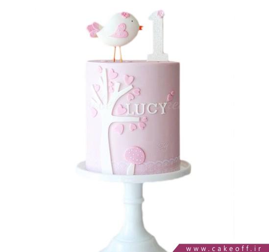 واع کیک تولد - کیک دخترانه گنجشک لب بوم   کیک آف