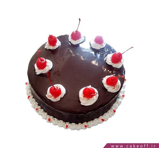 کیک تولد در اصفهان - کیک نیوشا 5 | کیک آف