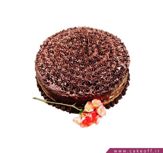 کیک عمو نوروز 1