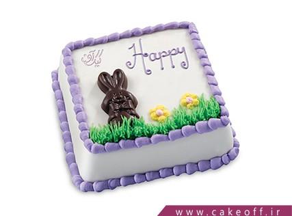کیک تولد بچه گانه - کیک یه بچه داریم شاه نداره | کیک آف