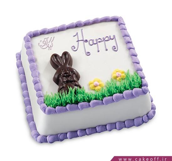 کیک یه بچه داریم شاه نداره