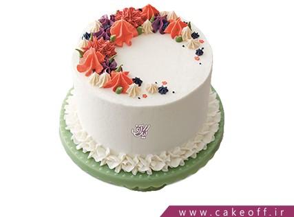 کیک تولد - کیک مهمونی خامه ها | کیک آف