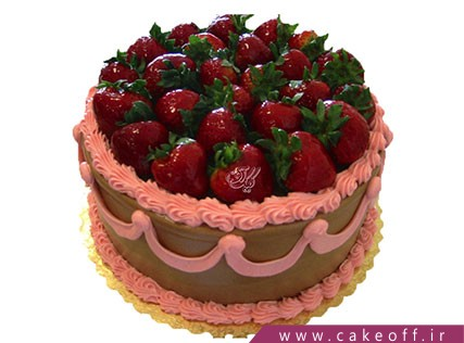 کیک میوه ای نیوشا | کیک آف