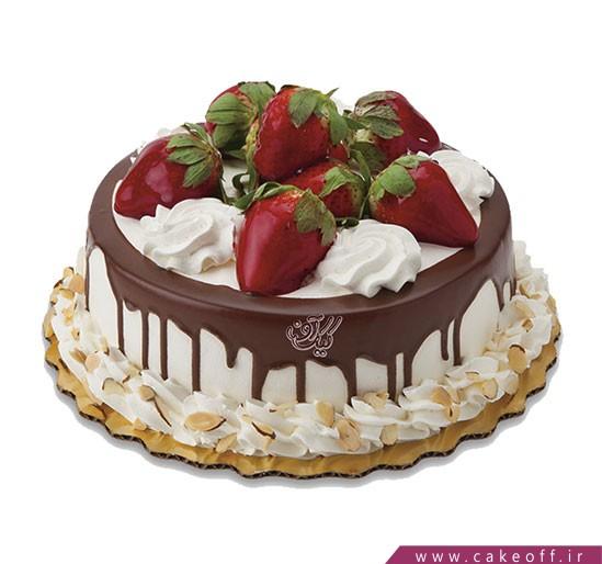 کیک نیوشا چکه ای