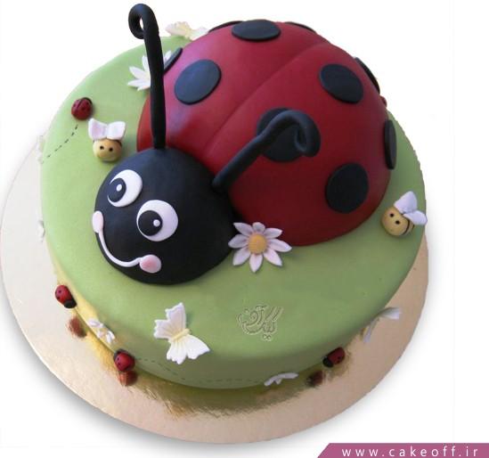 کیک کفشدوزک خندان