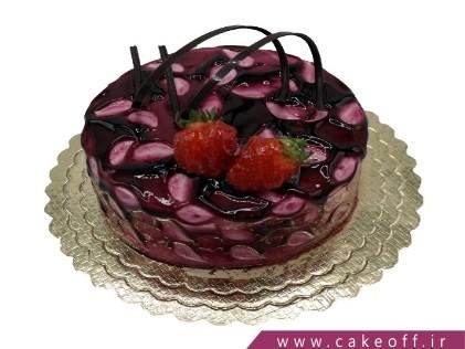 کیک ساده شکلاتی ارمیا | کیک آف