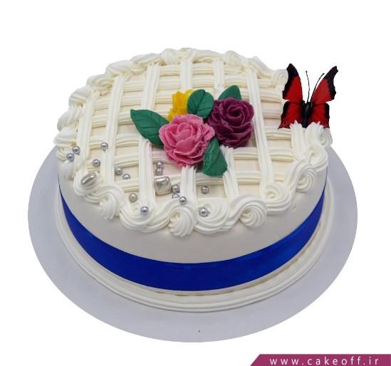 کیک بی بی و پروانه های زیبا