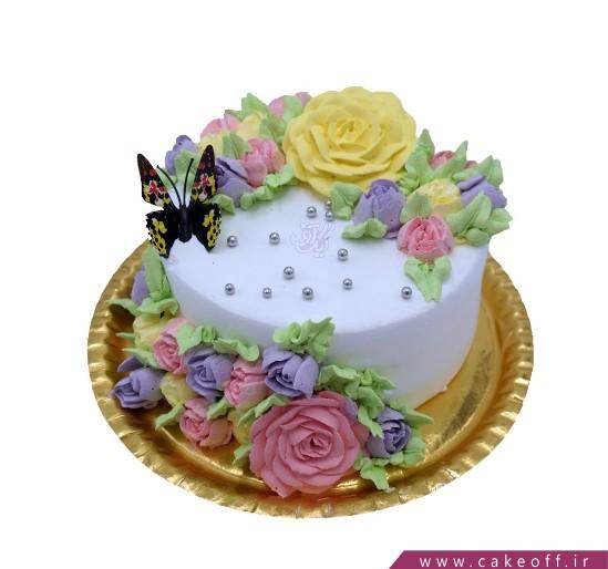 کیک بی بی در باغچه سبز
