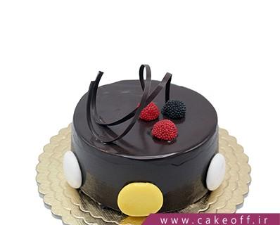 کیک ساده شکلاتی  پارمیدا | کیک آف