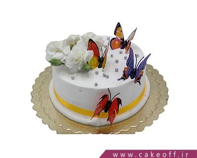 کیک ساده پروانه ها
