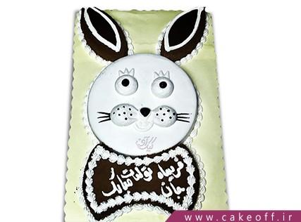کیک تولد حیوانات - کیک خرگوش 2 | کیک آف
