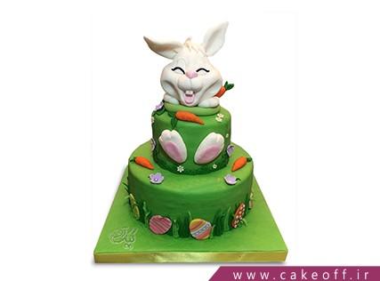 کیک تولد حیوانات - کیک خرگوش 6 | کیک آف
