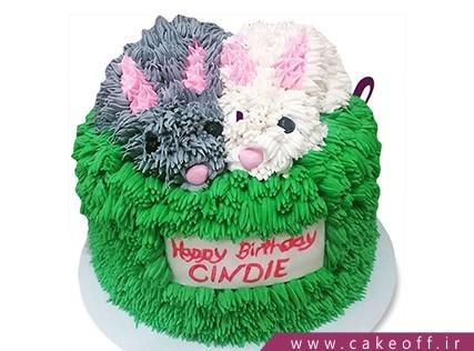 کیک تولد حیوانات - کیک خرگوش 7 | کیک آف