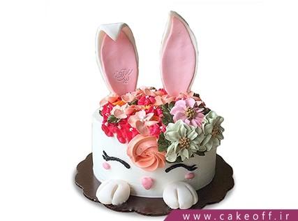 کیک تولد حیوانات - کیک خرگوش 9 | کیک آف