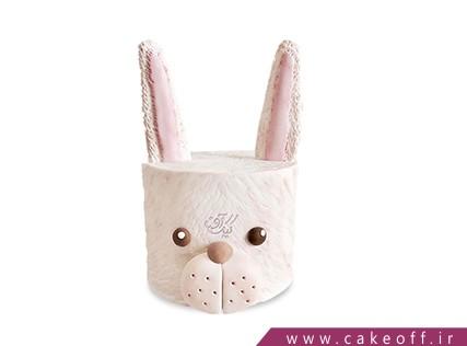 کیک تولد بچه گانه - کیک خرگوش 18 | کیک آف
