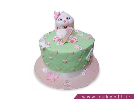 کیک تولد بچه گانه - کیک خرگوش 19 | کیک آف