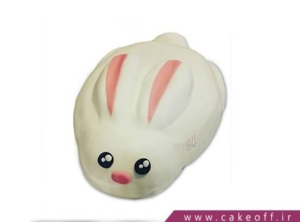 کیک تولد بچگانه - کیک خرگوش 27 | کیک آف