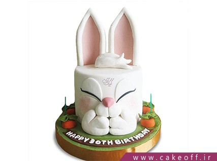 کیک تولد بچگانه - کیک خرگوش 30 | کیک آف