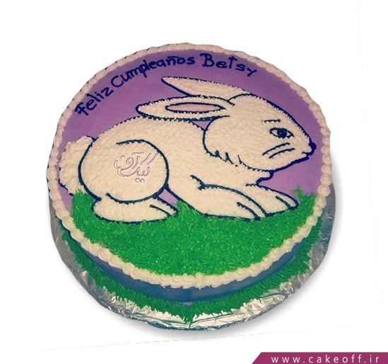 کیک خرگوش 1