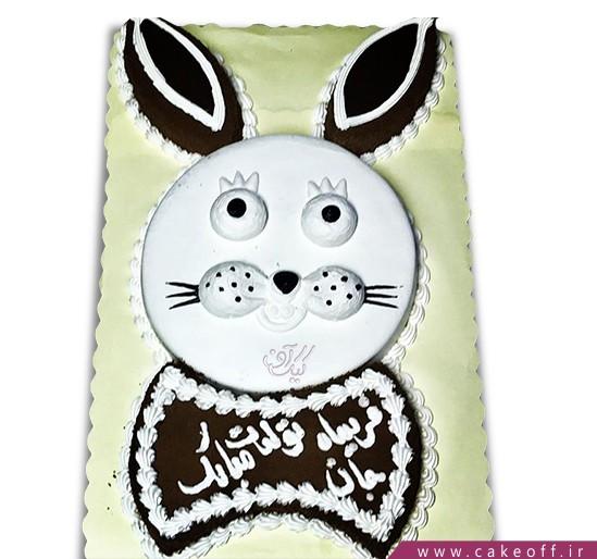 کیک خرگوش 2