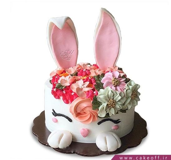 کیک تولد حیوانات - کیک خرگوش ۹ | کیک آف