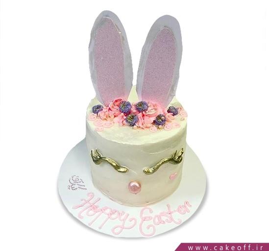 کیک خرگوش 11