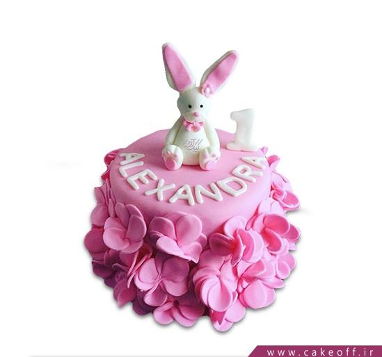 کیک خرگوش 12